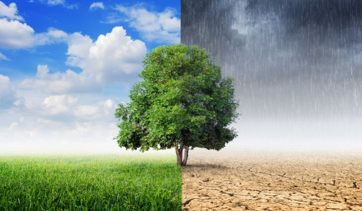 perubahan musim  bumi datar