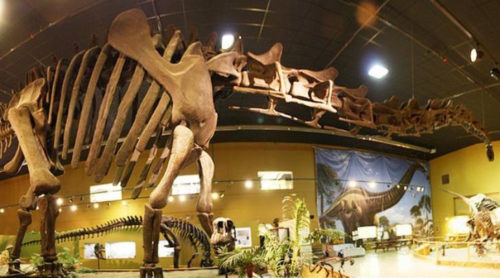 kerangka-dinosaurus-palsu